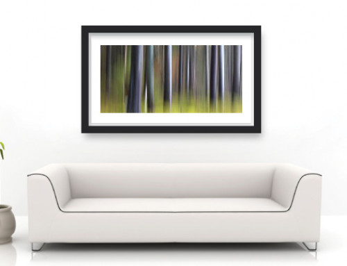 Designer Tips: Decorating with Fine Art Photography (Chapter 2/2: Place, wall and size)