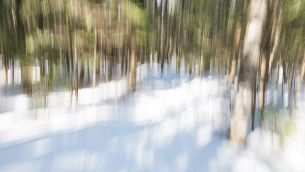 Lumière d'hiver 2