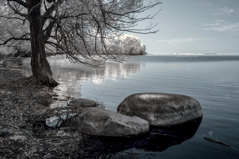 De l'île Saint-Bernard_02